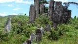 grobowce-i-pomniki